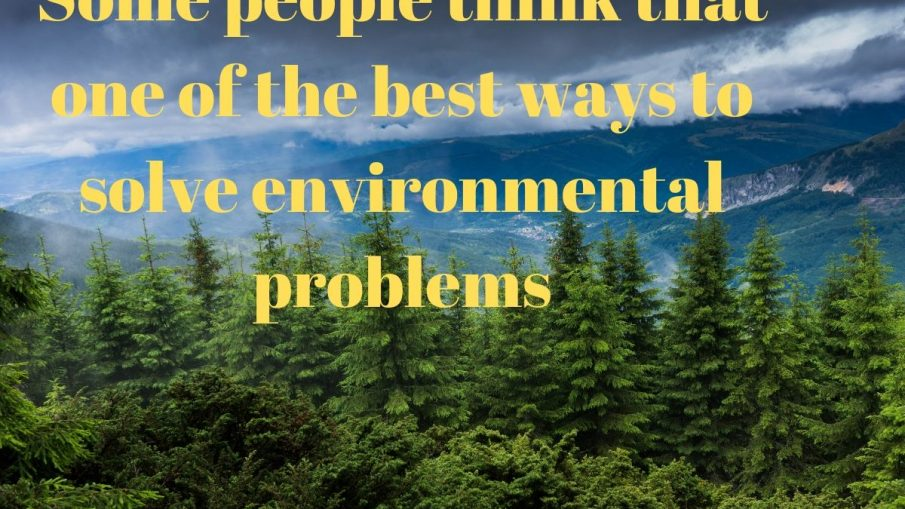 Some people think that one of the best ways to solve environmental problems